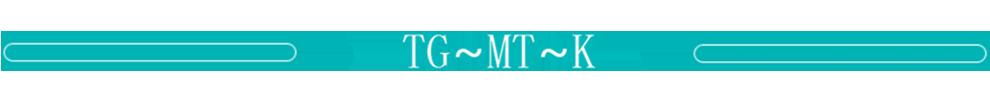 山特 TG~MT~K系列_牛盾能源商城